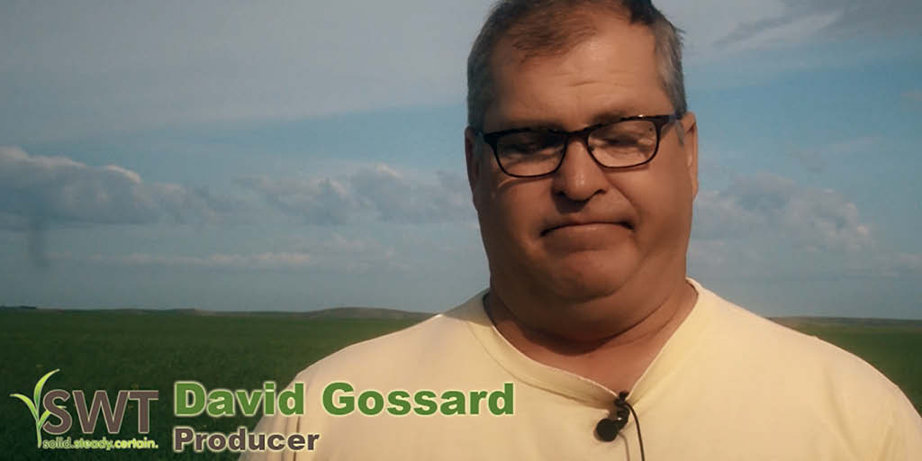 Producer Profile – David Gossard